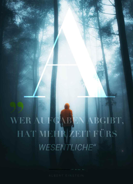 Insights - Ein Poster Design / Layout mit einem Zitat von Albert Einstein