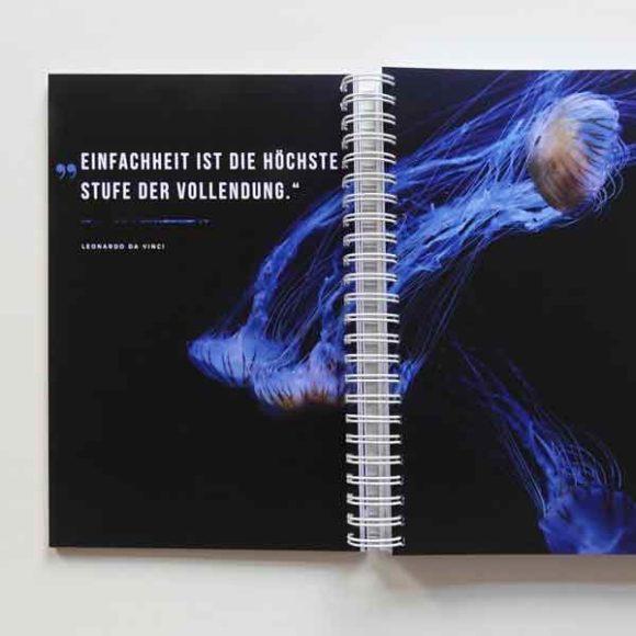 Insights - Seite des Agenturbuchs der Aksis Werbeagentur