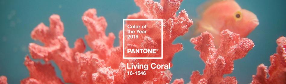 Pantone Trendfarbe 2019 Living Coral | Aksis